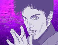 Prince Digi-stration™
