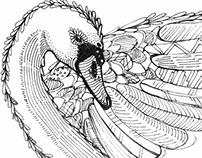 Intricate Bird - Mamalicious  // Tee Prints