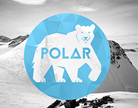 Polar Bear Insulation Logo/Identity
