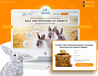 Sale and breeding of rabbits