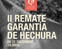 Luis Guzman / Hechura de Caballos de Polo