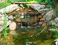 Benefits of Hiring Pro Koi Pond Builders