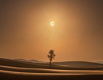 A Desert Eclipse