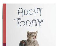 Angel's Wish Adoption Brochure