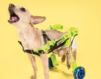 FiGO Rear Support Pet Wheelchair