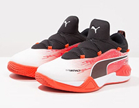 PUMA EVOimpact indoor / handball