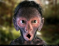 little Monkey 2