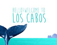Los Cabos/ design&animation