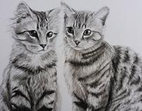 Charcoal Kitties