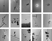 O mistério dos tênis voadores