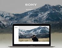UX Web Design Portfolio