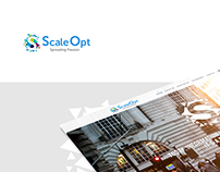ScaleOpt | Landing Page