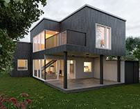 House in Vilinius. 3 D Visualization