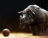NBA (Rino) | África