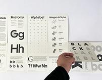 Typographic Specimen: Niveau Grotesk