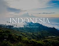 Travel agency website consept