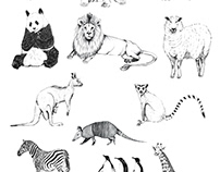Animals-Illustration