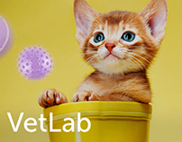 Cute website for veterinary clinic