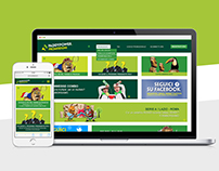 Web Responsive Paddy Power Microsite