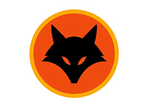 Brand Identity of Firefox