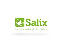 Web Design - Salix