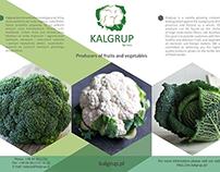 Branding for Kalgrup Ltd