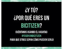 Bicitizens // Investigación, Web, Gráfica