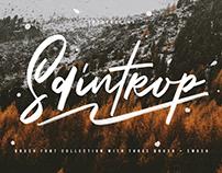 Saintrop Brush Font Collection