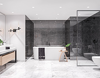 Project of two bathrooms in two different variations.