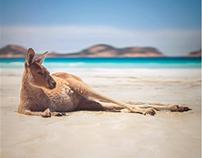 Australia Trip