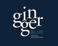 Ginger Blue, conseil stratégique