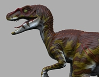 Velociraptors: Male & female