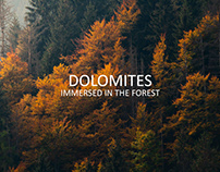 The autumnal Dolomites forests