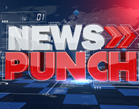 NEWS PUNCH