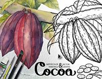 Watercolor and graphic Cocoa plants