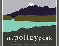 The Policy Peak Logo