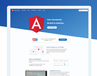 Angular Documentation Website Design & Development