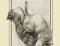 Suegrallus Gallus Domesticus