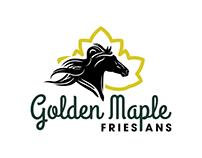 Custom Logo for Horse Farm