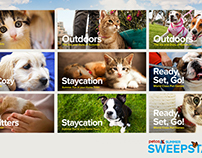 Petco - Everything Under The Sun Responsive Website