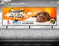 Campanha Veterinária Mato Grosso