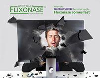 Flixonase