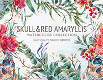 Watercolor Skull&Amaryllis