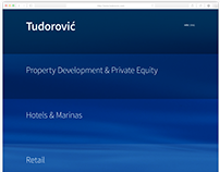 The Tudorovic Group Website