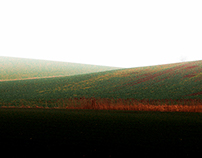Ein weites Feld II