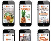 Bibibop - Mobile Website Design