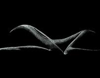 L'ombre du corps