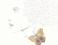 Lucidity (out of an owl butterfly)