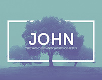 JOHN: The Wonders and Works of Jesus - Sermon Series
