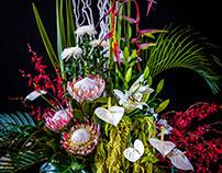Melbourne Flower Show 2016